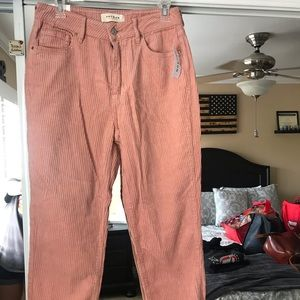 Brand new Pac Sun mom jeans